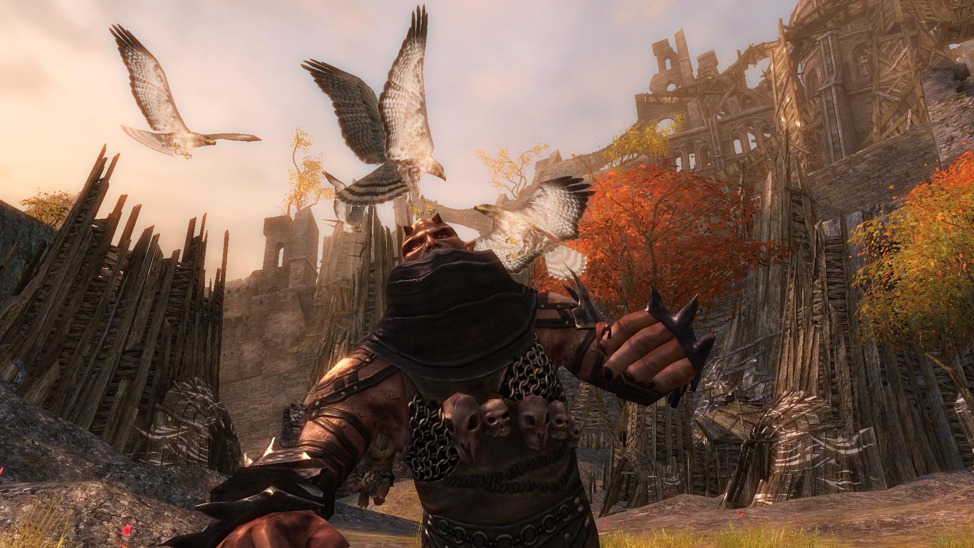 Guild Wars  Hunter Build