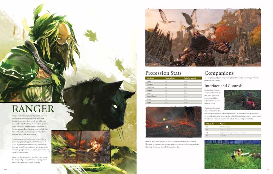 guild wars 2 strategiebuch