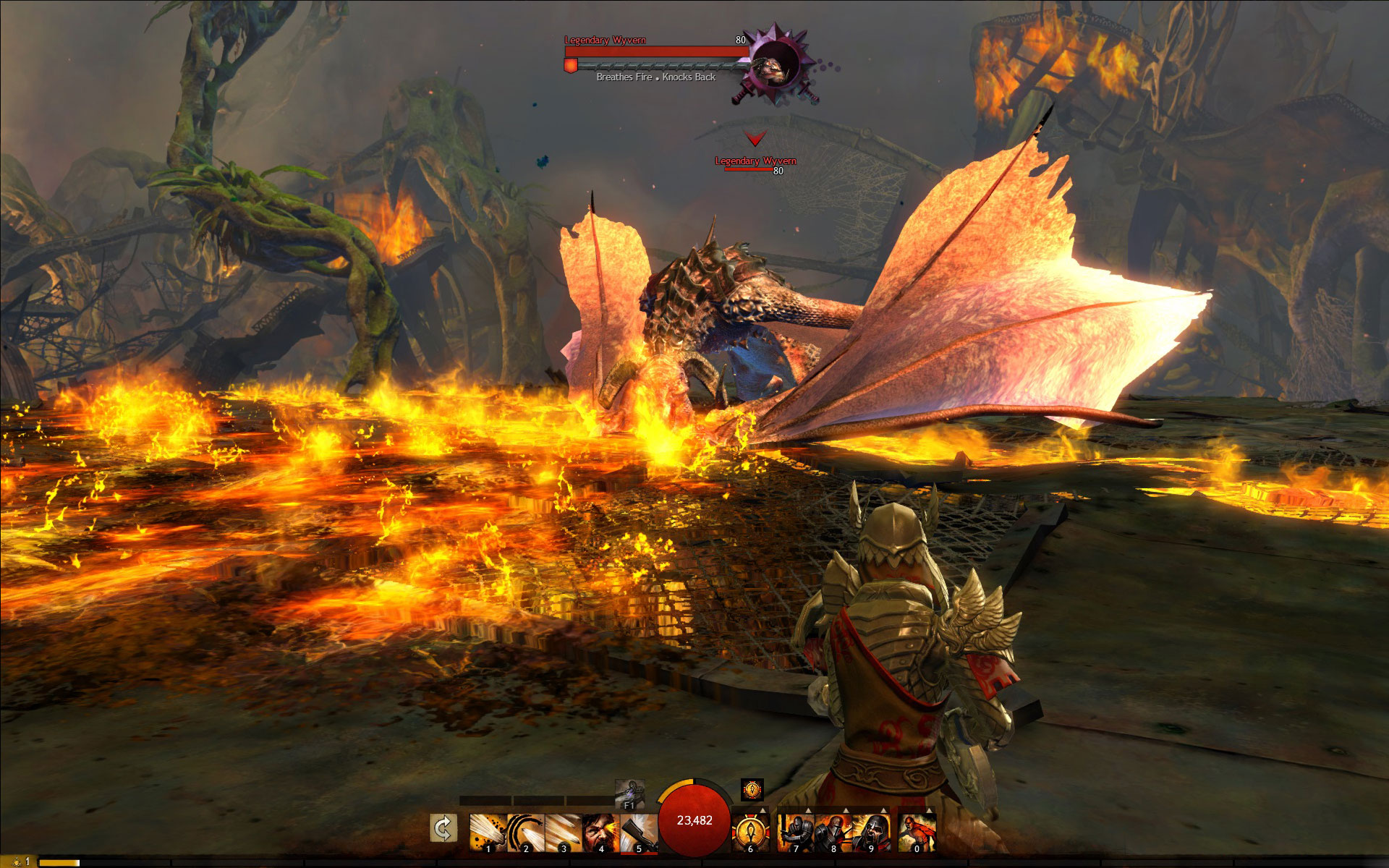 Meet the Wyvern in Guild Wars 2: Heart of Thorns