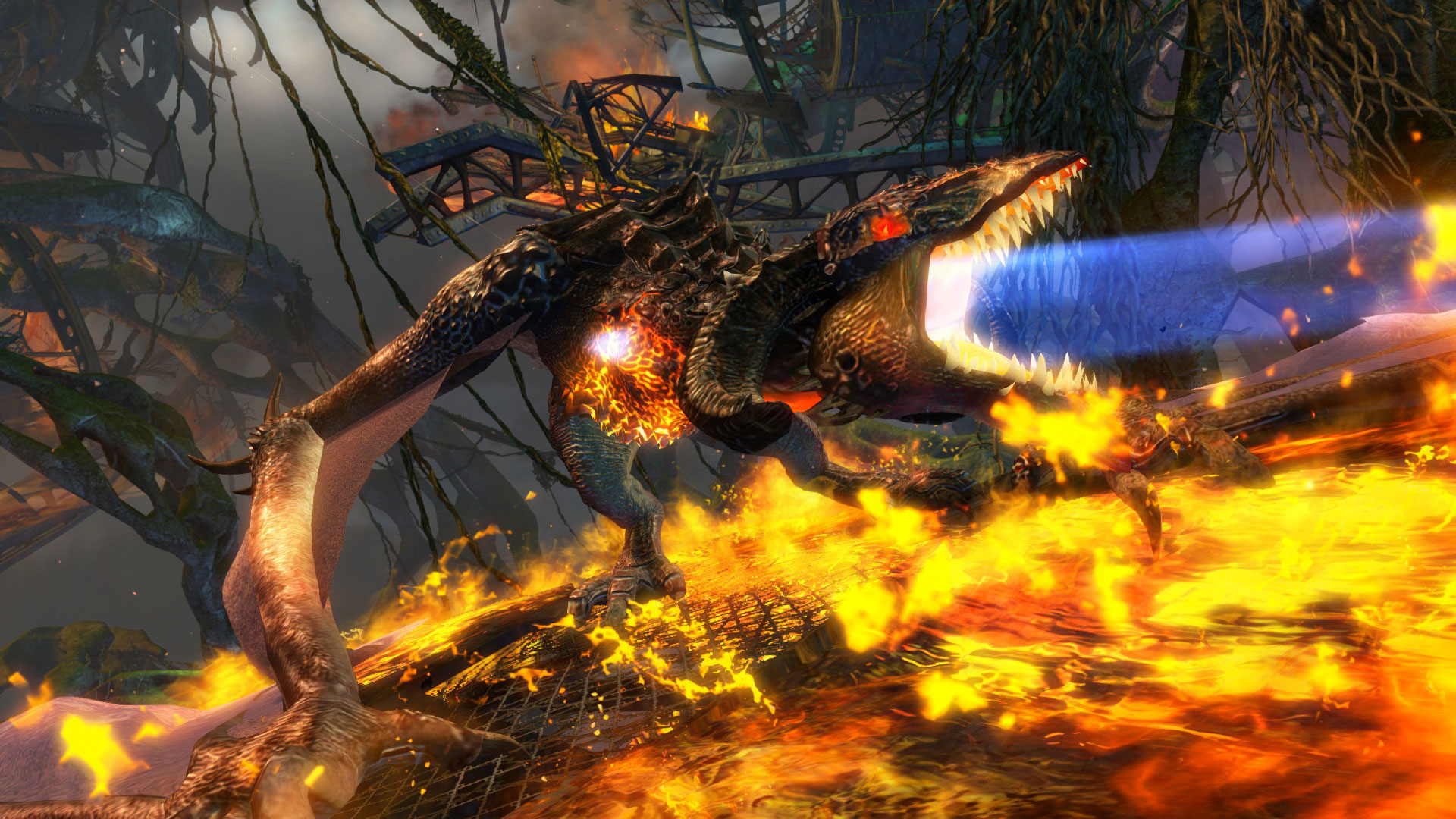 Meet the Wyvern in Guild Wars 2: Heart of Thorns | GuildWars2 com