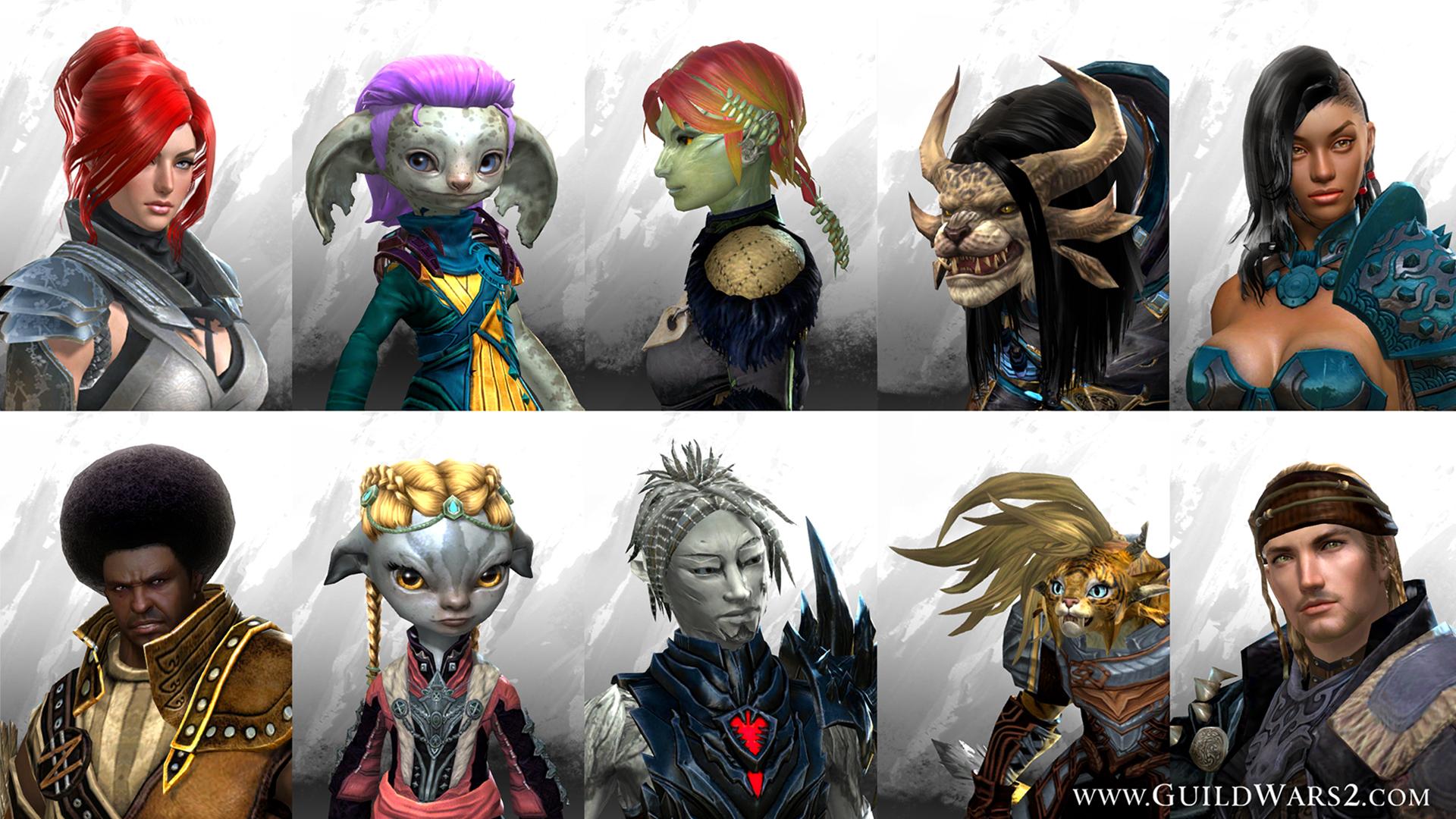 Kit coiffure guild wars 2