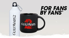 Guild Wars 2 mug and water bottle available now!